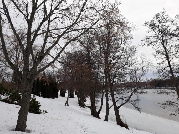 Kuusankosken Rantapuisto talvella