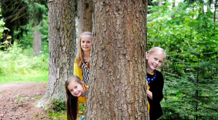 Lapset kurkistaa puuntakaa Mustila Arboretumissa
