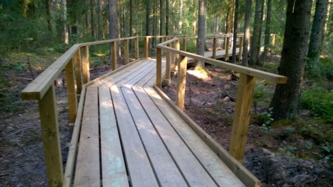 Laudoista rakennettu kävelypolku kaartuu oikealle metsässä. Polun molemmilla reunoilla puiset kaiteet.