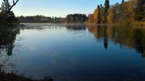 Kuvassa virtaavaa veden pintaa Kymijoessa. Joen toisella puolella puiden lehdet jo hieman syksyn kellastamat.