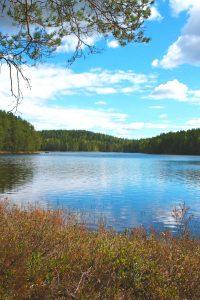 Kuvassa järvimaisema. Kuvan etuosassa kanervikkoa ja ylöosassa männynoksia. Taivas on kirkas ja puolipilvinen.