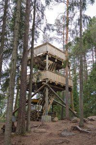 Kuvassa puinen neliskulmainen luontotorni metsän keskellä mäen päällä. Tornissa kaksi kerrostasannetta.