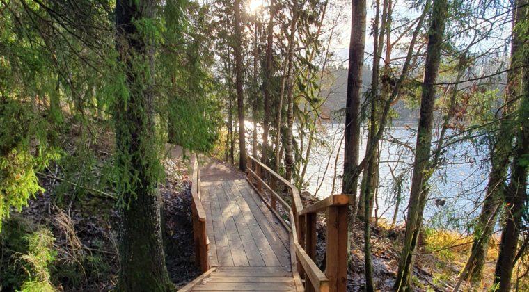 Puinen silta vie ojan yli Kymijoen rantaa myötäilevällä luontopolulla Niskalassa.