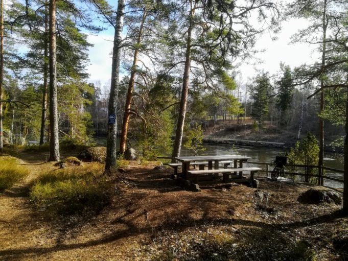 Kuvassa mäntyjä sekä puinen pöytä ja kaksi penkkiä korkealla kallion päällä joen rannassa.