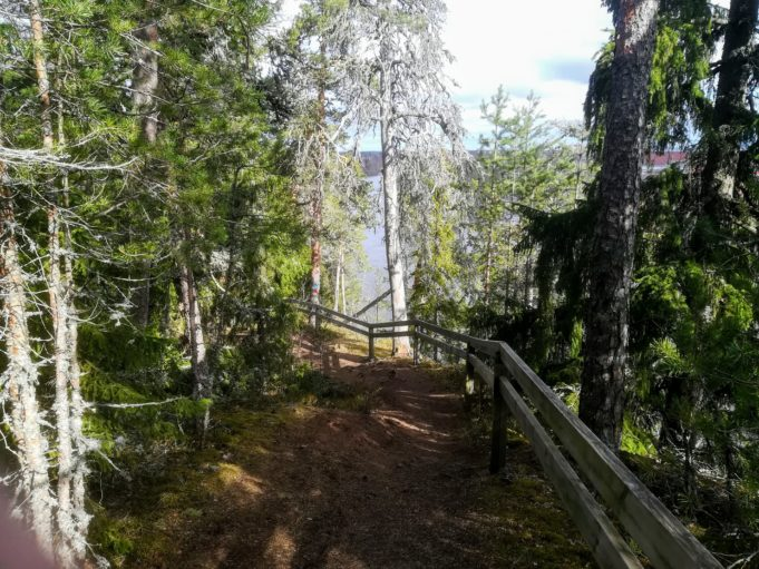Kuvassa polku metsässä korkealla joen rannalla, Polun oikealla puolella turva-aita.