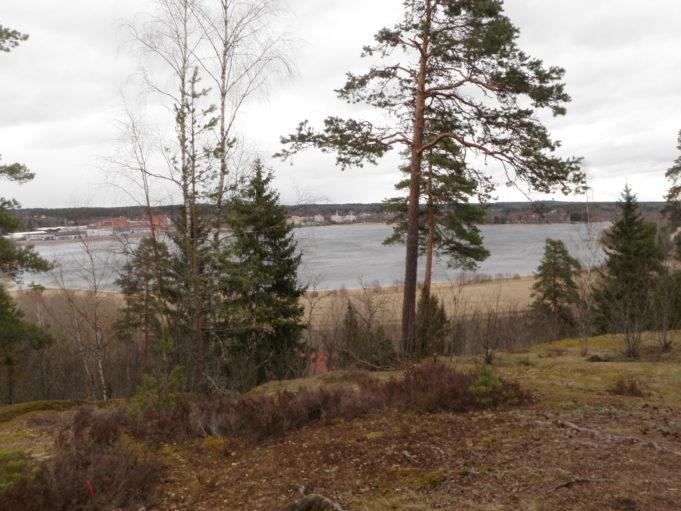 Kuvassa puita, joiden takaa näkyy alempana maastossa oleva jäätynyt lampi. Taivas on pilvinen.