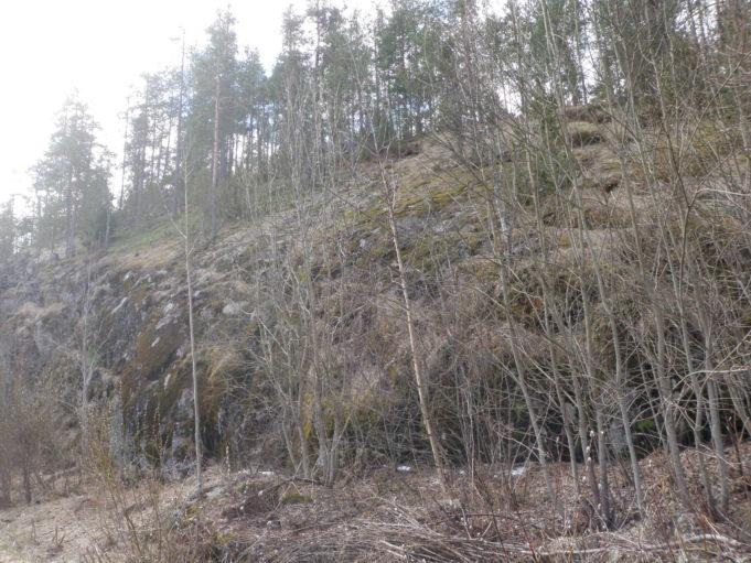 Kuvassa sammalpeitteinen kalliorinne. Kallion edessä alhaalla lehdettömiä lehtipuita. Kallion päällä havupuita.