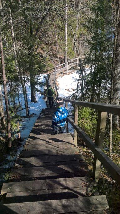 Kuvassa puiset portaat alaspäin ja puinen polku jatkuu alhaalla kaartuen oikealle. Aurinko paistaa puiden välistä, alhaalla maassa lunta.