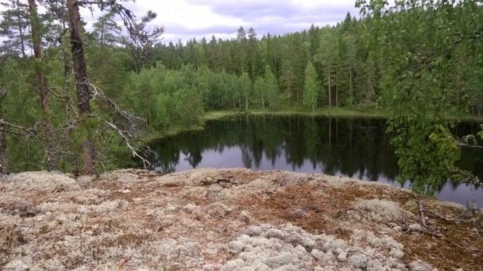 Kuvassa sammaleinen kallio ja kallion reunalla känkkärä mänty. Alhaalla näkyy lampi ja sekametsää.