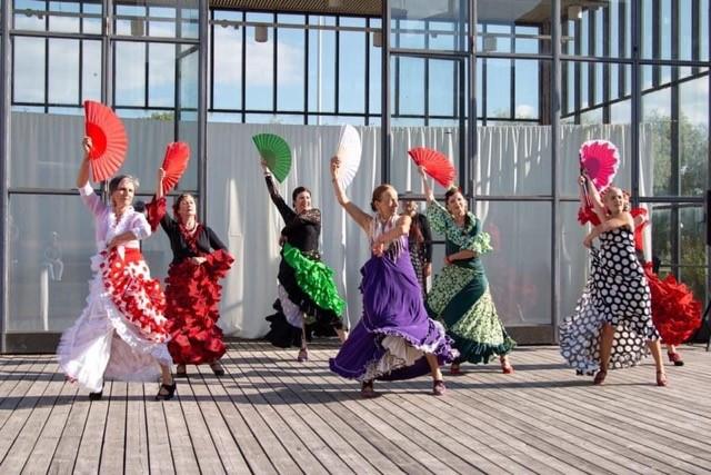 Paula Vekkilän kuva Flamingo Azul tanssiryhmän esiintymisestä.